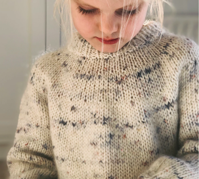 Petiteknit Novice Sweater Junior - PAPIRUDGAVE
